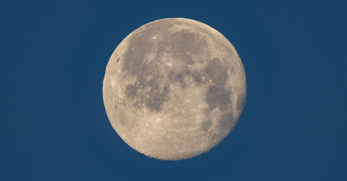 <p>NASA delays moon lander awards as Biden team mulls moonshot App thumbnail
