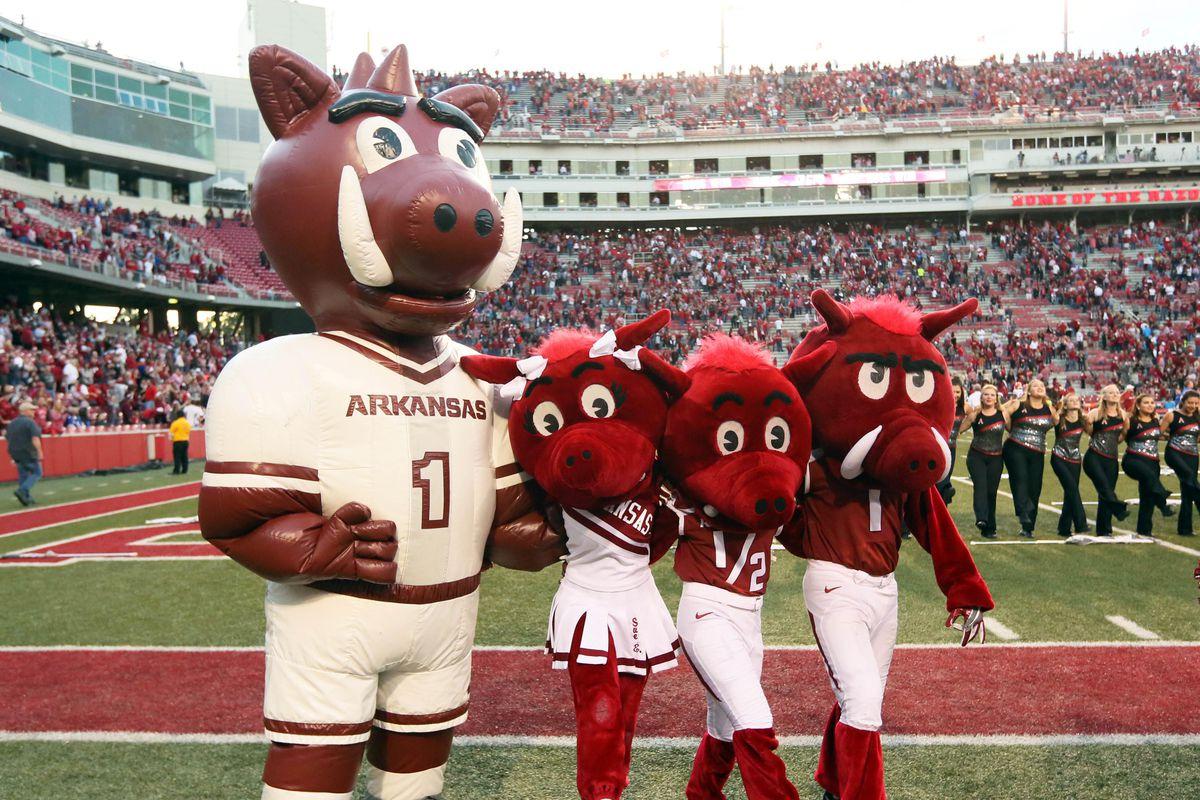 NCAA Football: Florida at Arkansas