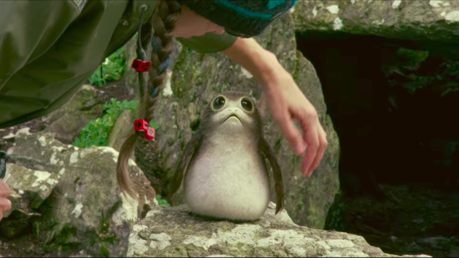 Star Wars: The Last Jedi's puffin-like critters may be more than meets the eye