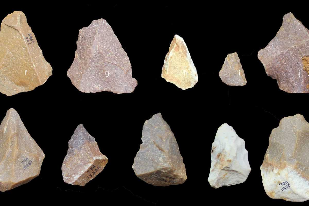 Discovery In India Suggests An Early Global Spread Of Stone Age Technology