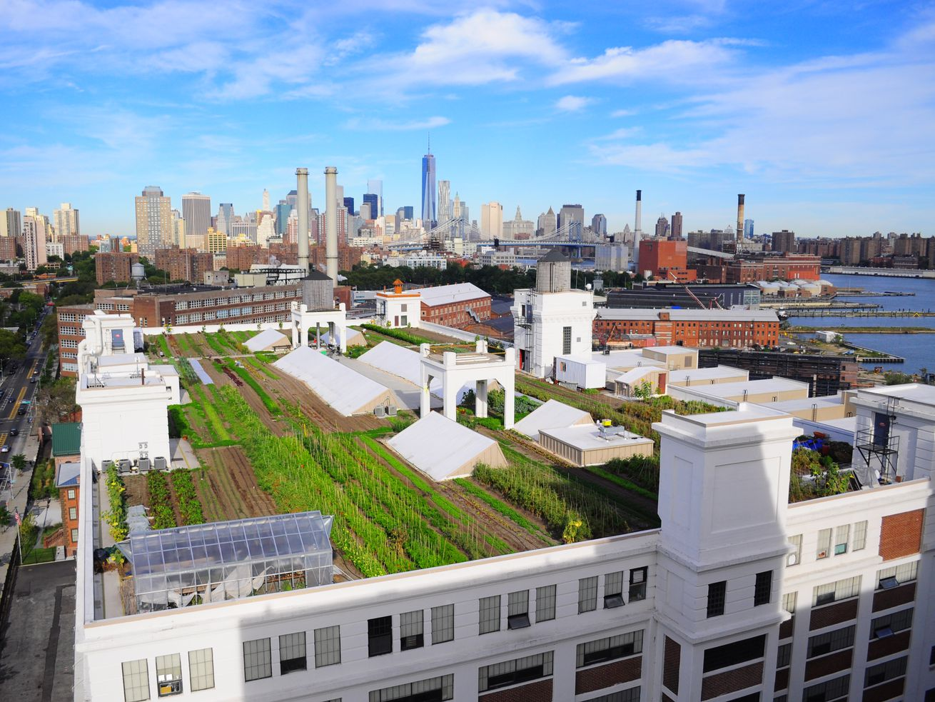 7 ways cities are transforming urban rooftops