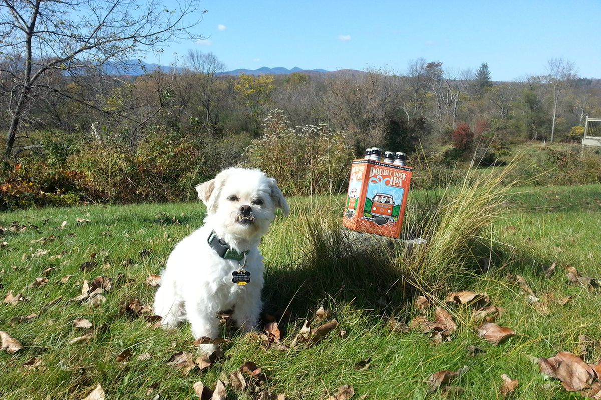 Baxter's is dedicated to his beer column, and got up early for this week's selection.