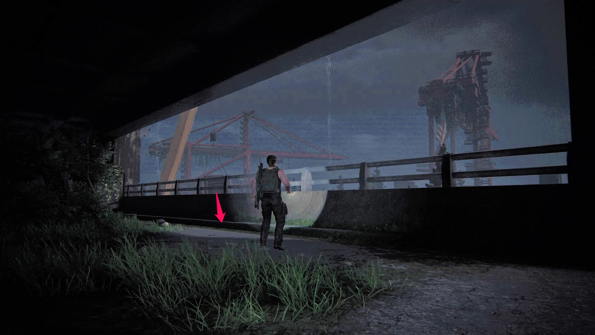 The Last of Us Part 2 guide: Seattle Day 1 collectibles (Abby)