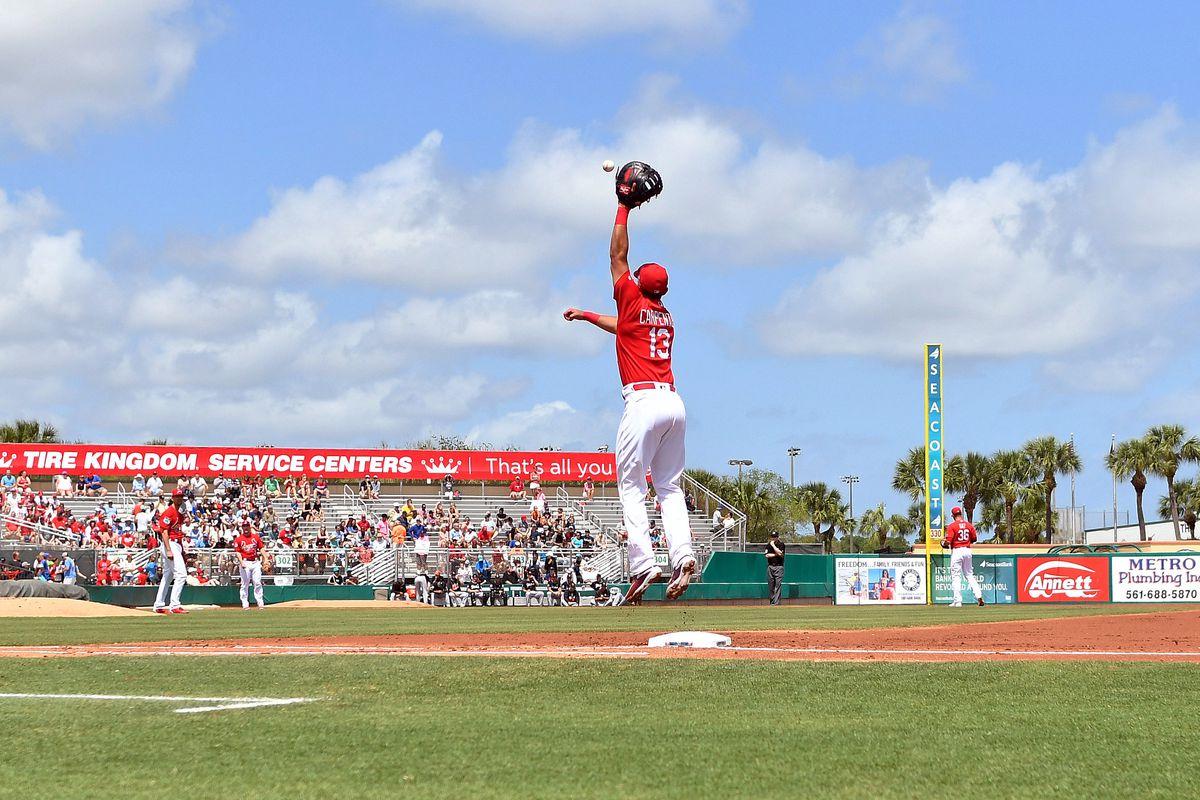 MLB: Spring Training-Miami Marlins at St. Louis Cardinals