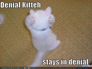 Denial Kibbeh