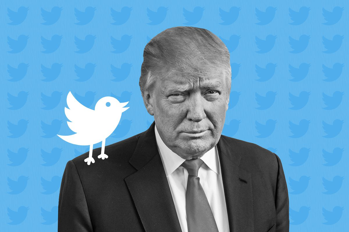 A photo illustration of President Donald Trump with a Twitter bird on his shoulder.