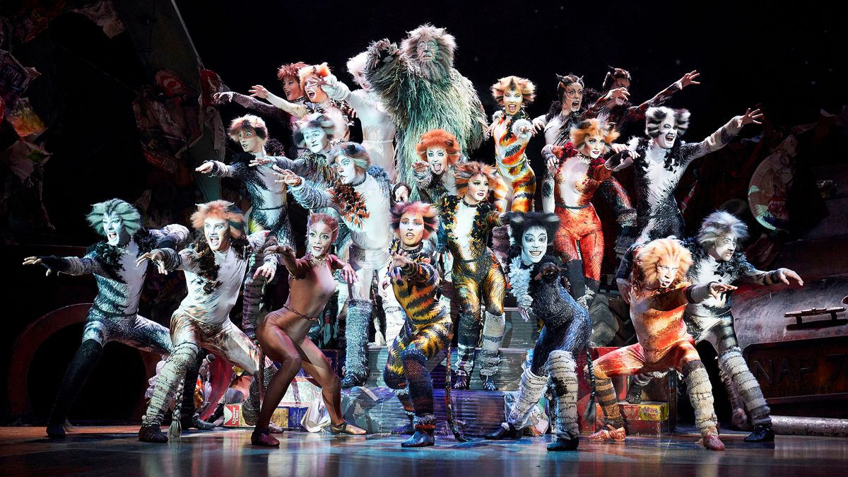 Cats: Explaining the story, the songs, and the weird cat