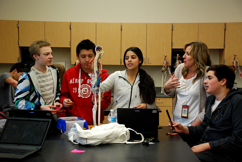 Students at Northglenn High School who are studying biomedical science work on an assignment.