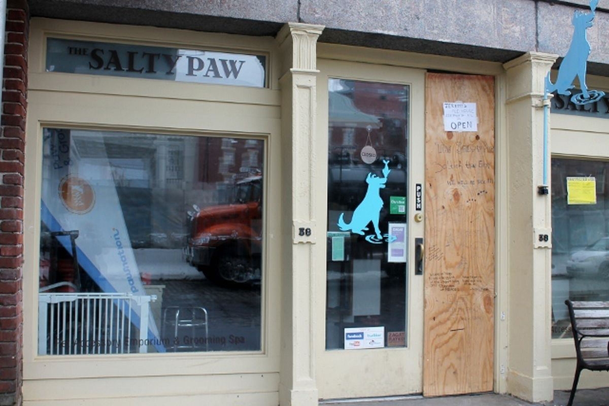 """Image via <a href=""""http://www.dnainfo.com/new-york/20121116/south-street-seaport/popular-seaport-dog-groomer-salty-paw-reopens-new-space-after-sandy"""">DNAinfo</a>"""