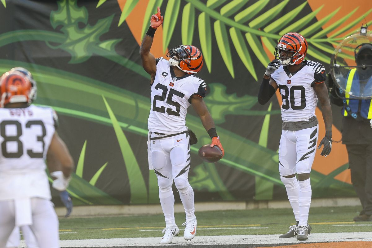 Cincinnati Bengals running back Giovani Bernard (25) celebrates after running the ball for a touchdown against the Tennessee Titans in the second half at Paul Brown Stadium.