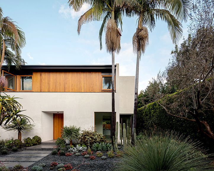 Jacobschang Architecture designed this stuccco and cedar Hollywood home within a 30-year-old hedge of ficus trees.
