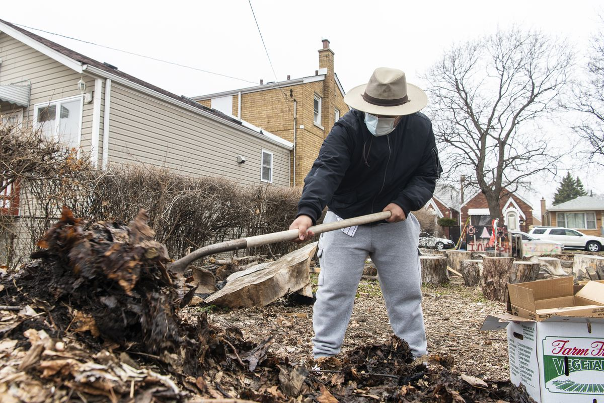 Alberto Rodriguez digs away dirt and leaves on a compost pile to add rotting vegetables and fruits to it at a community garden organized.