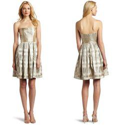 "Corey Lynn Calter Victoria strapless dress, <a href=""http://www.amazon.com/Calter-Womens-Victoria-Strapless-Silver/dp/B005SOD8K2/ref=brand_ltst_clth_i"">$196.65</a>"