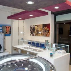 Here's a shot of Yogorino's newest outpost in Rome. See the Italian gelato wheel in the foreground.