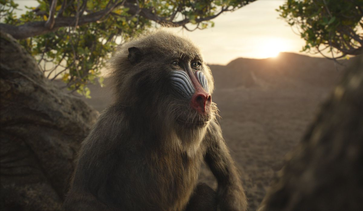 """Rafiki, voiced by John Kani, in a scene from """"The Lion King."""""""