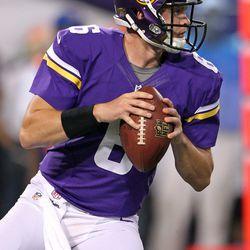 Aug 9, 2013; Minneapolis, MN, USA; Minnesota Vikings quarterback James Vandenberg (6) looks to pass during the fourth quarter against the Houston Texans at the Metrodome.