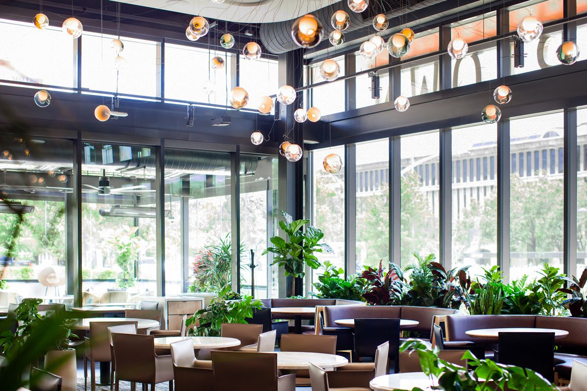 A restaurant dining room with leather banquettes, wood seats, and plants scattered throughout