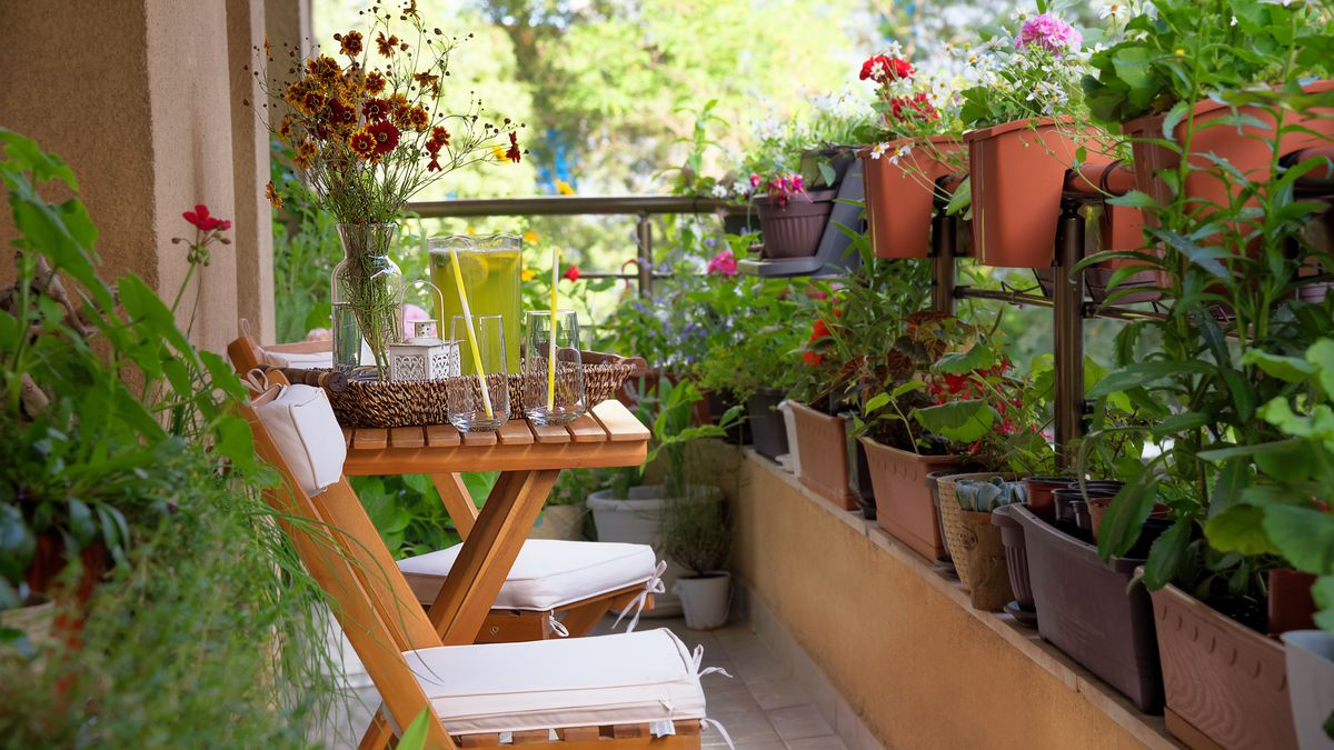 Urban Gardening Ideas Tips And Products For Small Spaces Curbed