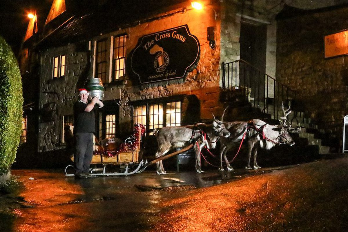 Box Steam Brewery's reindeer-powered beer delivery service.