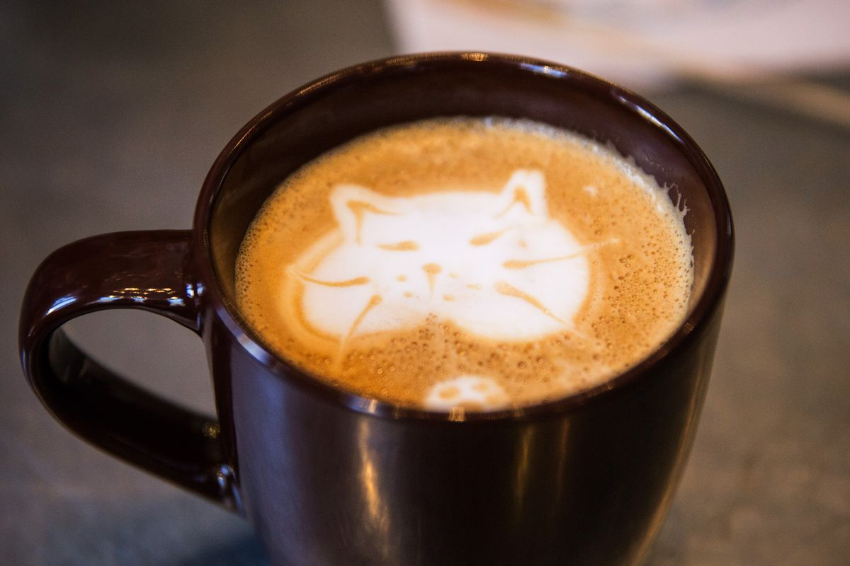 Latte art in the form of a cat's face.