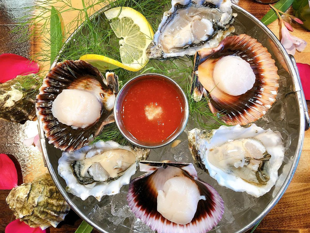 Oysters and scallops on ice