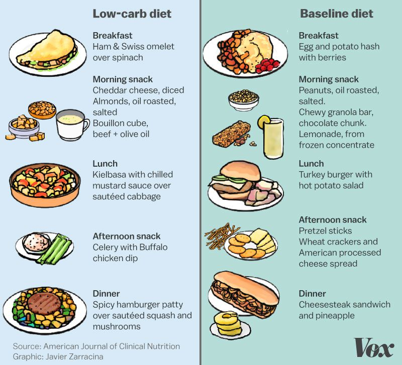 Low carb diets are all the rage  What if that's wrong? - Vox