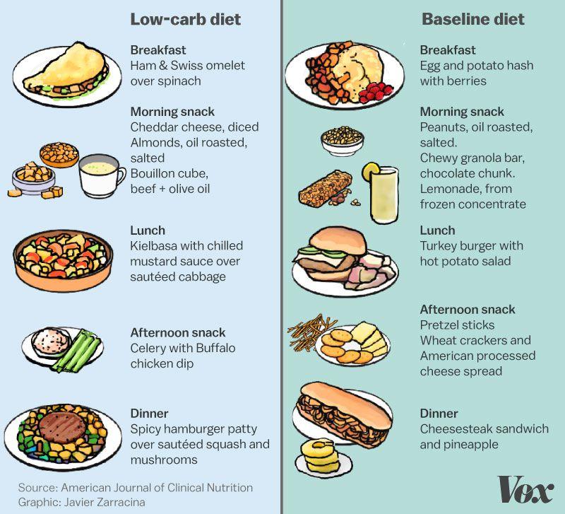 high fat diet vox