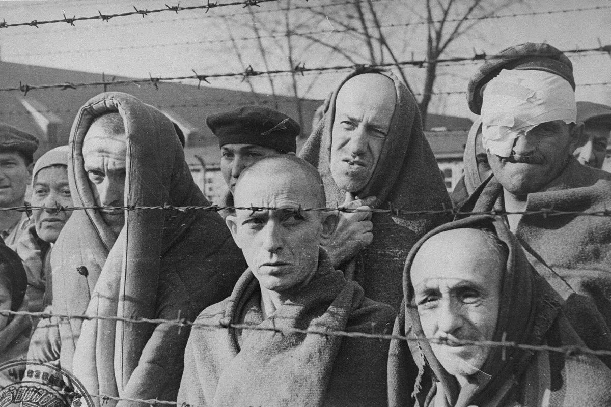 Read These Searing Quotes From An Auschwitz Survivor 39 S Essay On Life In The Camp Vox