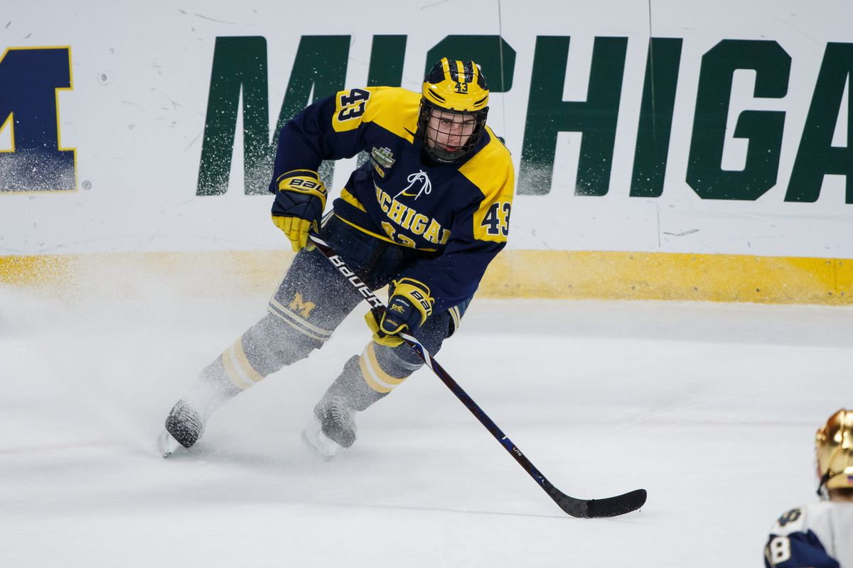 2018 NHL Draft Prospect Profile  Quinn Hughes - Mile High Hockey cbbabd475