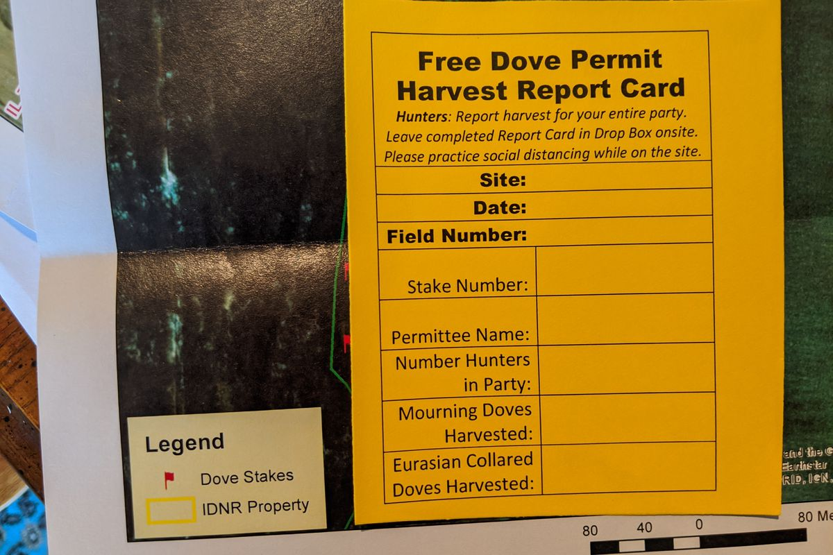 Anyone who drew a permit for dove hunting on public sites in Illinois will recognize the difference with procedures. Credit: Dale Bowman