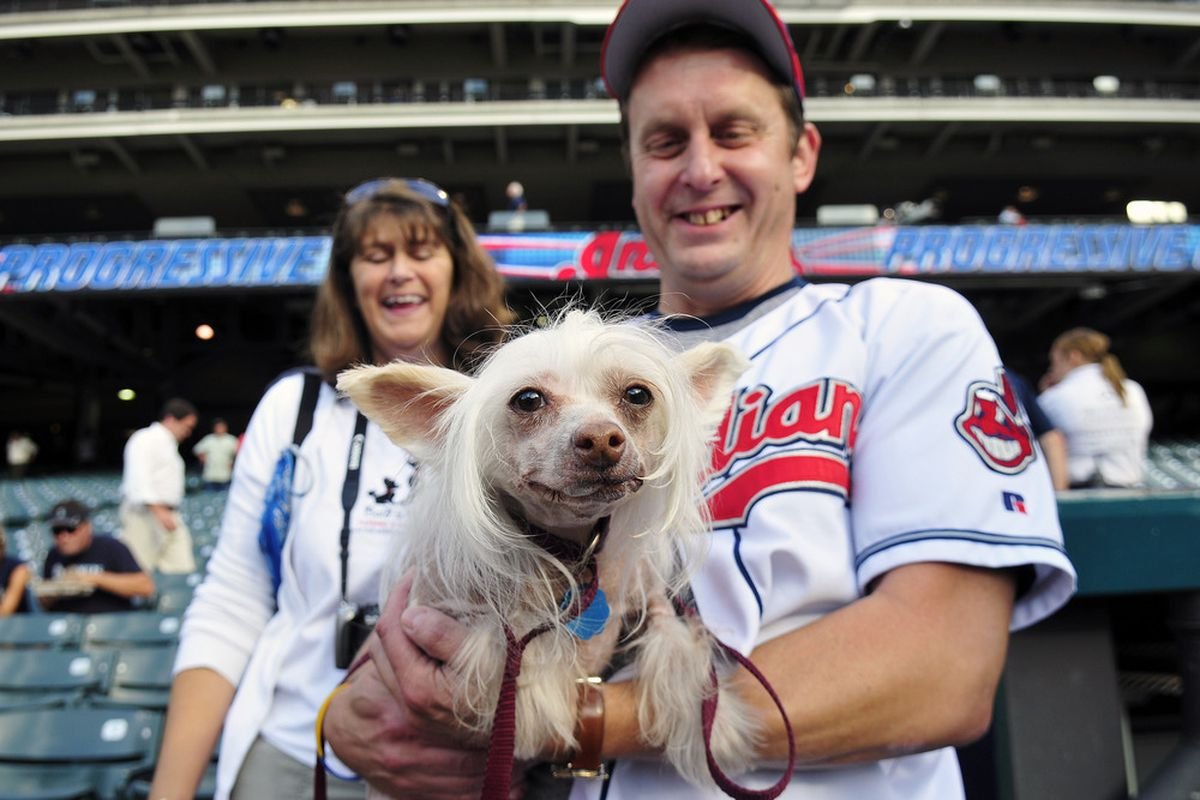 No photos from this one, so here's a weird dog. (Photo by Jason Miller/Getty Images)