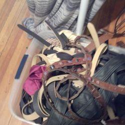 The $10 belt bin