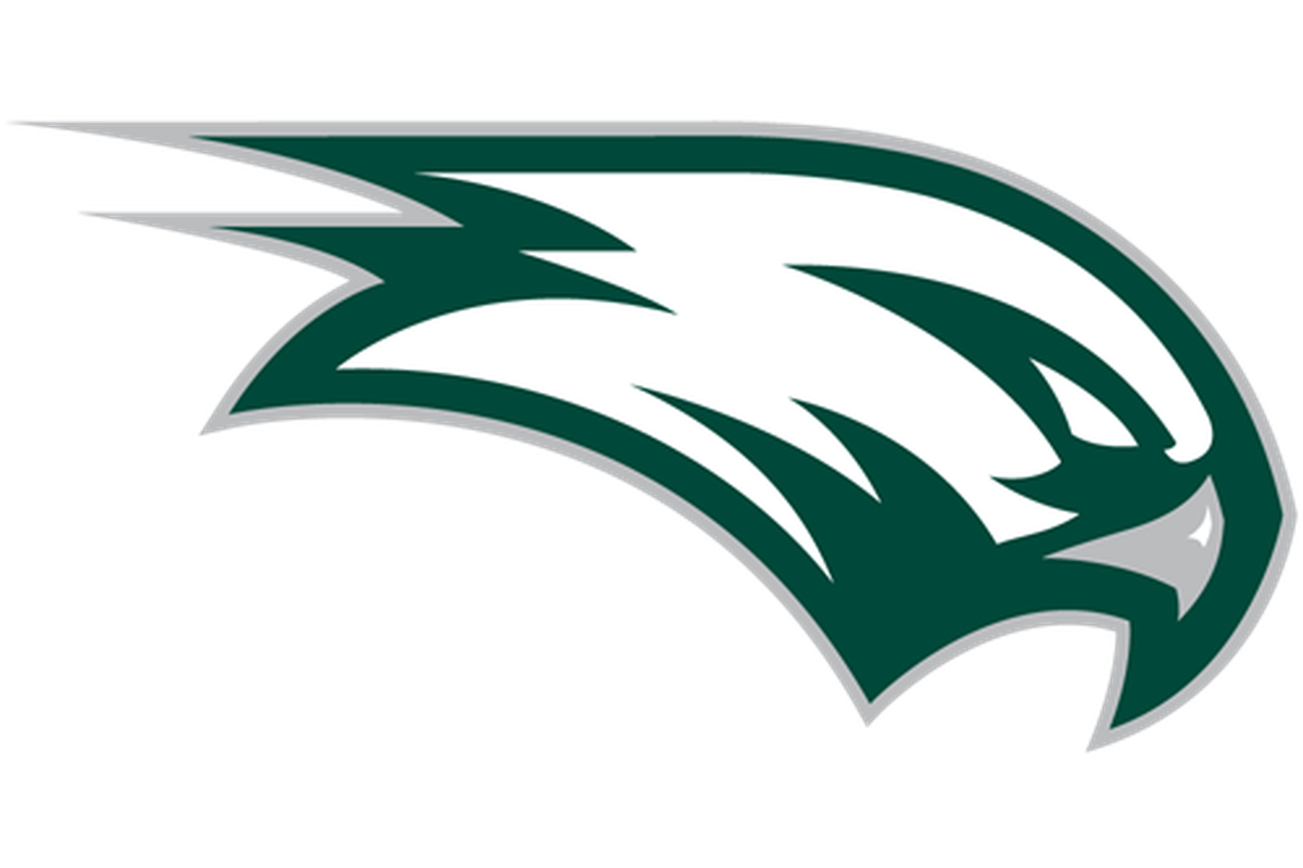 Seahawks Logo 2013 Png