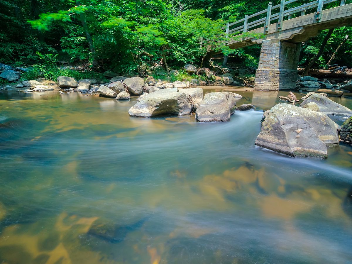 An area in Rock Creek Park in Washington D.C. There is a body of water and a bridge is spanning over the body of water. There are trees surrounding the area.