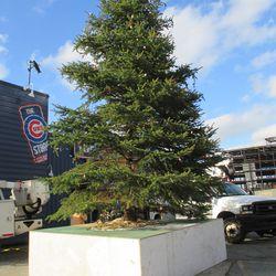 Dec 1: Wrigley Christmas tree, something else under construction -
