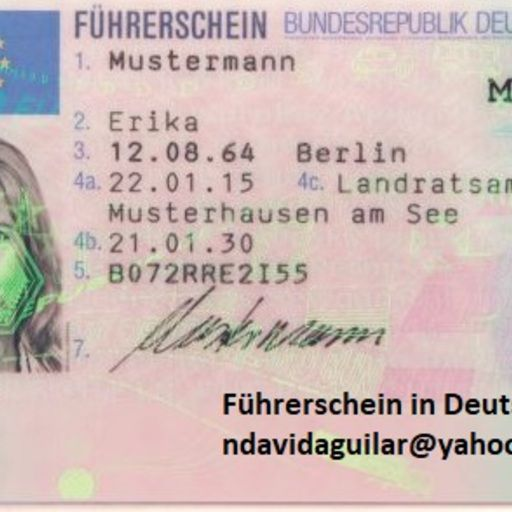 führerschein kaufen legal