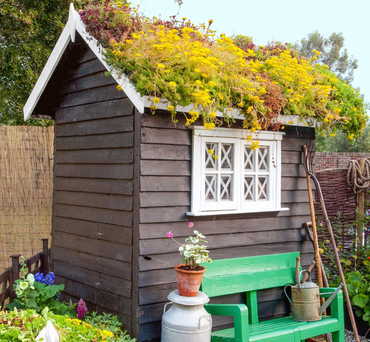 Green Roofed Garden Shed