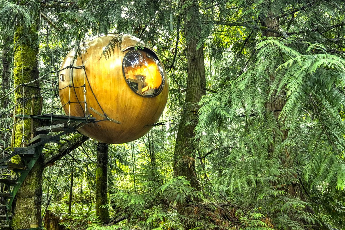 hanging tree orb for rent