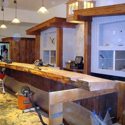 The bar, made from a whloe spruce tree.