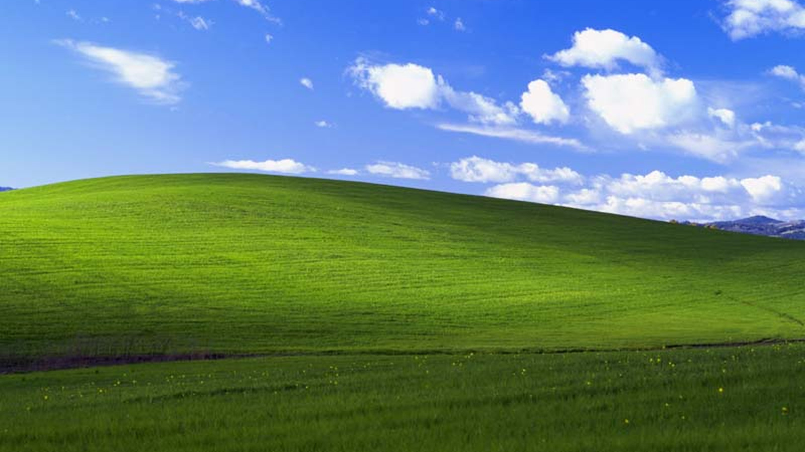 Microsoft Releases New Windows XP Security Patches, Warns Of State