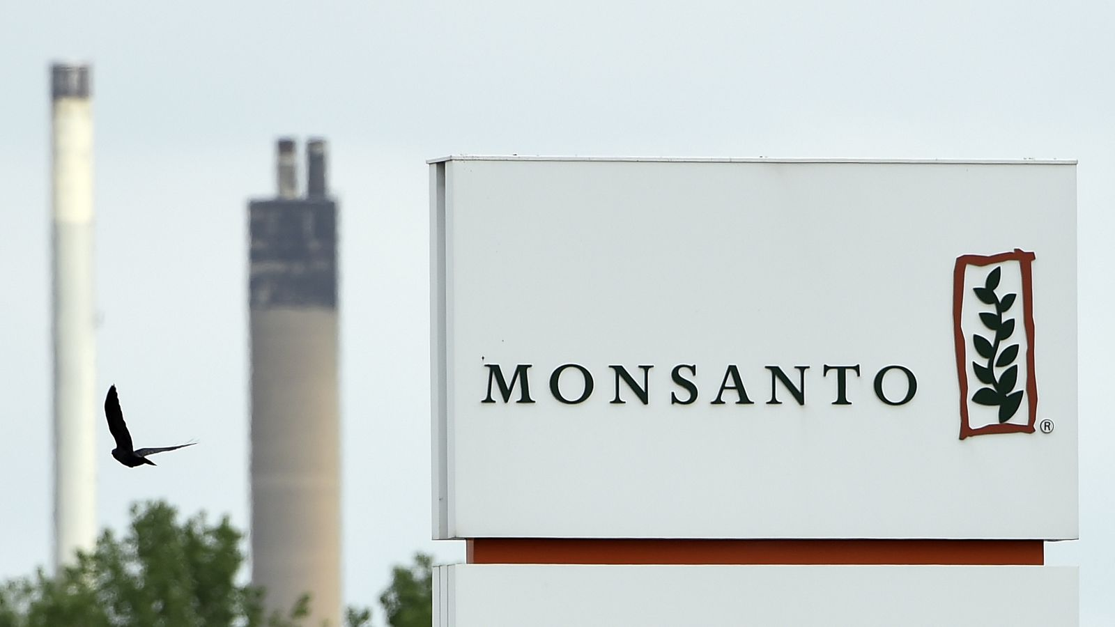 Why Bayer S Massive Deal To Buy Monsanto Is So Worrisome Vox