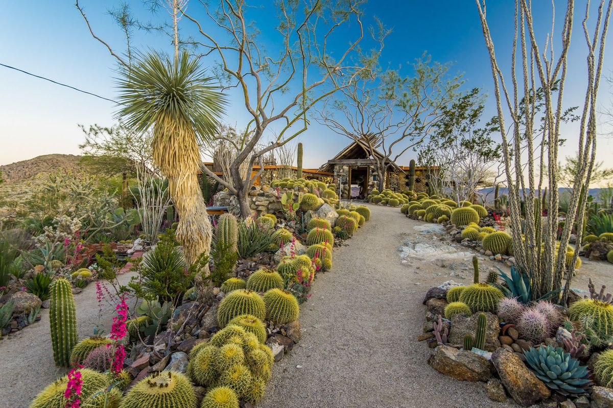 Exterior view of cactus-lined dirth path leading to a stone house in desert landscape.