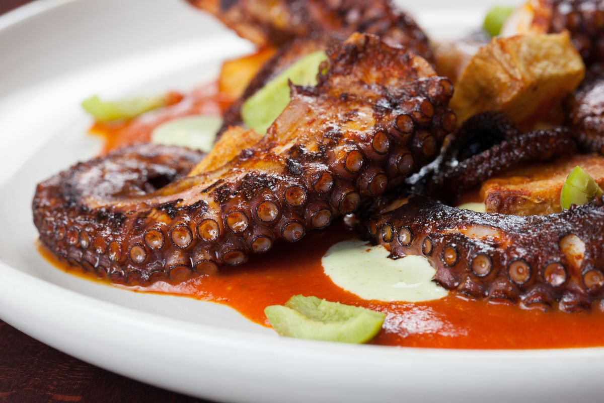 A closeup of grilled octopus on a white plate on a bed of red sauce.
