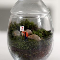 """<a href=""""http://twigterrariums.com/products-page/readymade-terrariums-nationwide-shipping/gentle-reminder/""""> Twig Terrariums Gentle Reminder terrarium</a>, $60 twigterrariums.com"""