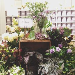 Starting the morning with flowers—it's a friend's birthday today. This gorgeous <b>Polux</b> flower shop is inside the new <b>Club Monaco</b> flagship! They did a great job on the renovation.