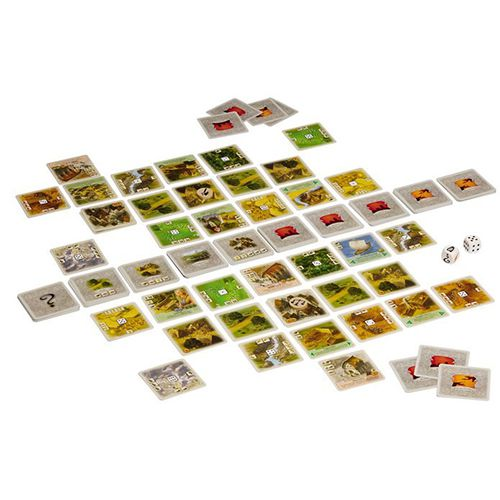 Components of the Rivals for Catan gameplay