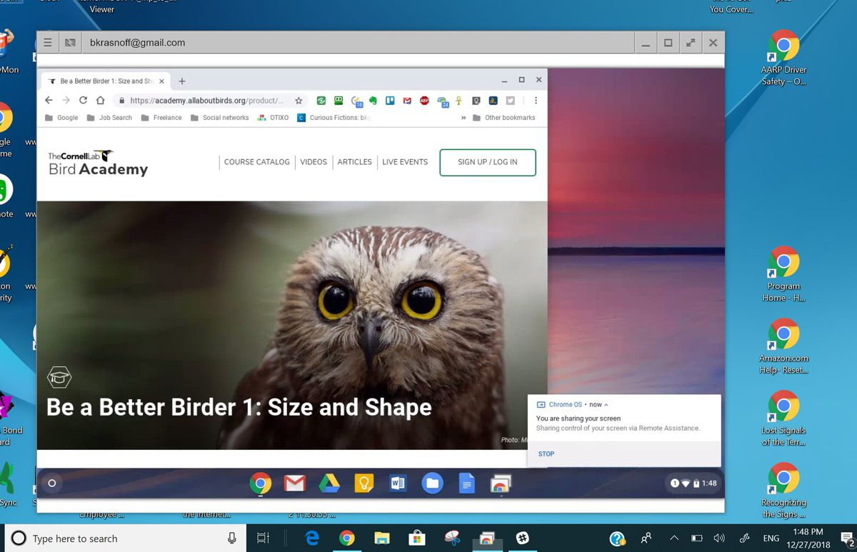 Chrome Remote Desktop sharing screen
