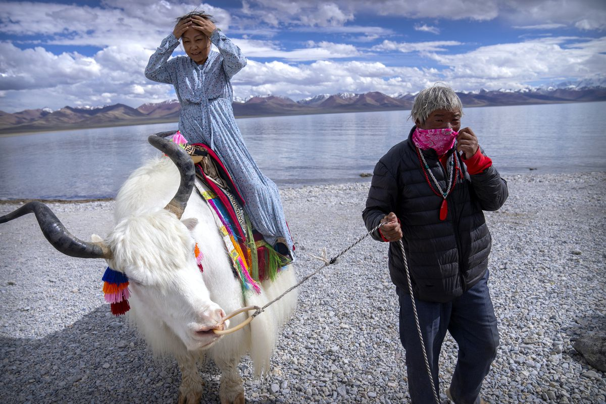 A Chinese tourist prepares to pose for a photo atop a white yak led by a Tibetan in Namtso, in the Tibet Autonomous Region (western China).