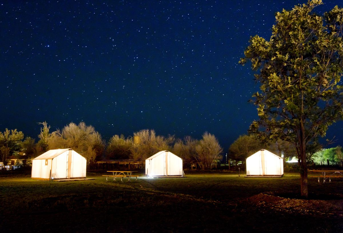 A row of three tents in a field. It is night and the sky is full of stars. There are trees surrounding the field. The tents are illuminated from within.