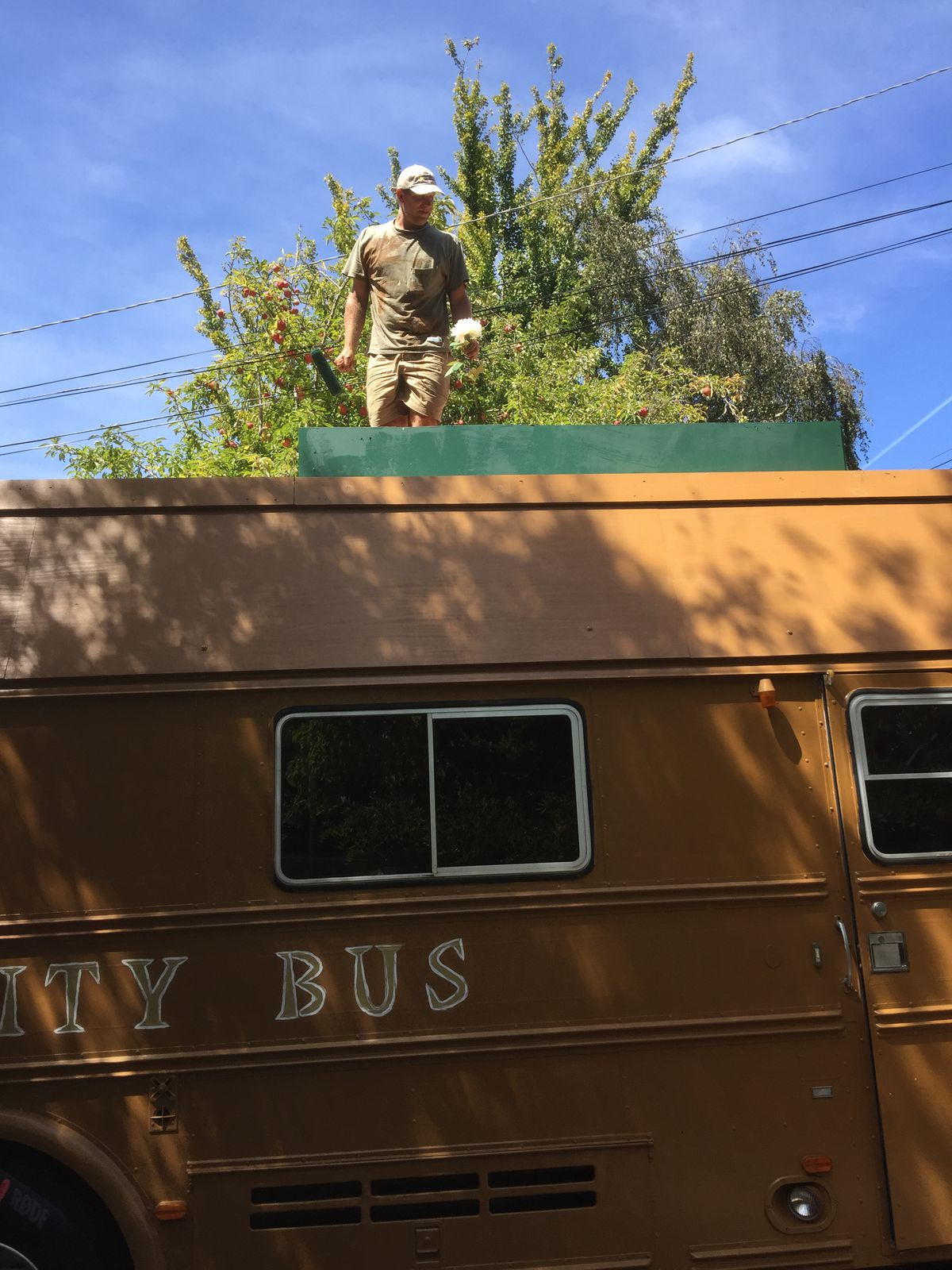 Man in dirty tshirt and shorts stands on top on RV, with green flower bed in front of him.